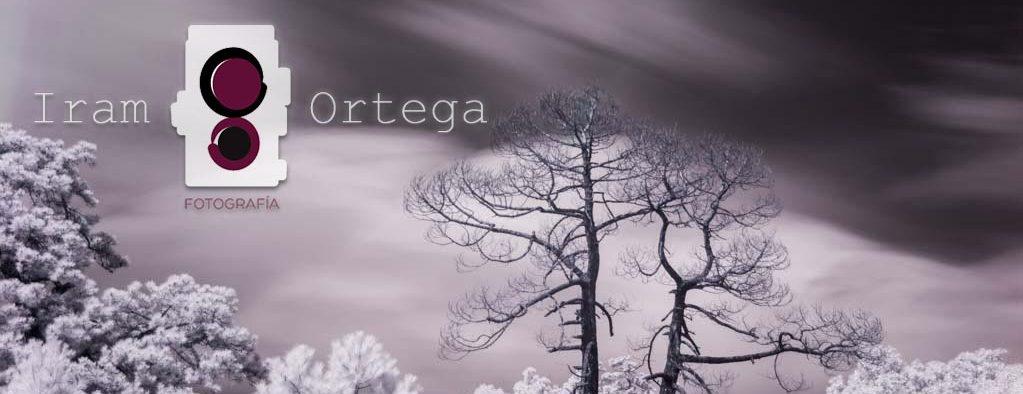 Iram Ortega